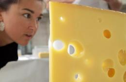 Поставщики сыра из Европы нашли способ обойти санкции