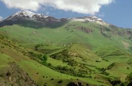 Китайские инвесторы арендуют в Ингушетии 100 гектар земли для бизнеса