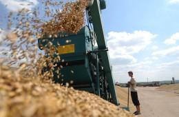 РФ увеличила в 2014 году экспорт сельхозтоваров до $18,9 миллиарда