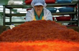 Первые торги начались на рыбной бирже Сахалина