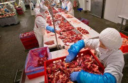 Россельхознадзор разрешил четырем предприятиям Бразилии ввоз мяса