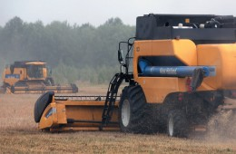 Правительство РФ определится с экспортной пошлиной и ценами на зерно