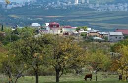 Крыму нужно 10 000 специалистов для исполнения программы развития