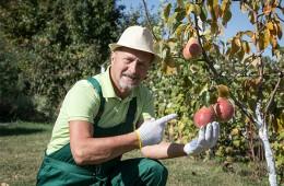 Для фермеров хотят ввести особые пенсии