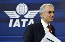 IATA поднимет вопрос о возобновлении полетов над Крымом