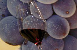 Разливное вино может пропасть с прилавков