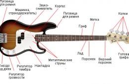 Бас гитара для начинающих или как сделать правильный выбор