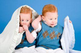 Как одеть близнецов в детский сад