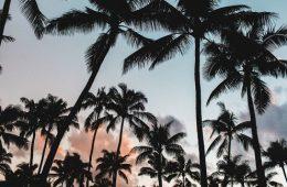 «Багамские документы» раскрыли офшорные следы европейских компаний