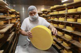 В Кузбассе откроется научно-экспериментальная лаборатория сыроделия