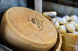 Адыгея планирует поставлять сыр в Сербию