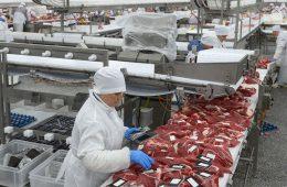 Цены на мясо решили не регулировать