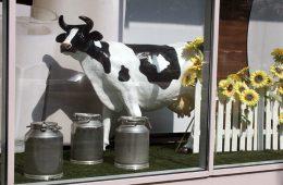 Минсельхоз хочет регулировать цены на молоко
