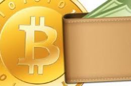 Обзор кошельков для хранения нескольких криптовалют одновременно