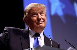 Сенат предложил урезать полномочия Трампа во избежание выхода США из НАТО