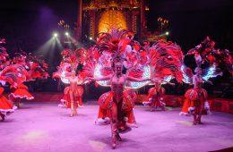 Цирковые шоу: красиво, величественно, ярко