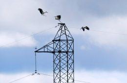 Правительство обсудит проект о микрогенерации в электроэнергетике