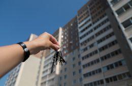 Счетная палата нашла неэффективно используемые федеральные земли