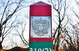 Высылку из России предложили сделать новым наказанием для иностранцев