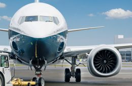 Минтранс выделит 5,6 млн рублей на защиту аэропортов от птиц