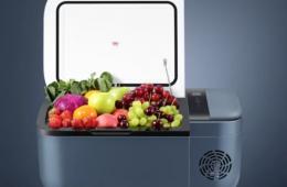 Какой автомобильный холодильник купить?