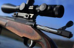 ORSIS заявила о желании Еревана решить оружейный вопрос неофициально