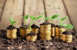 Инвестиции: Участие в инвестиционном фонде