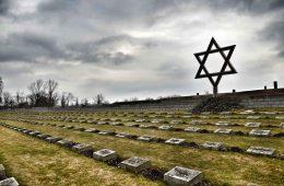 Вячеслав Моше Кантор: Владимир Путин понимает важность восстановления исторической правды о Холокосте и Второй мировой