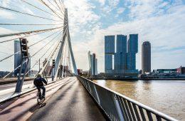 Открытие и регистрация фирмы в Нидерландах