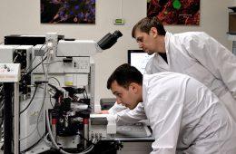 Правительство выделит свыше 350 млрд рублей на прикладные исследования