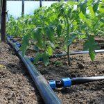 Кабмин утвердил госпрограмму для эффективного вовлечения в оборот сельхозземель